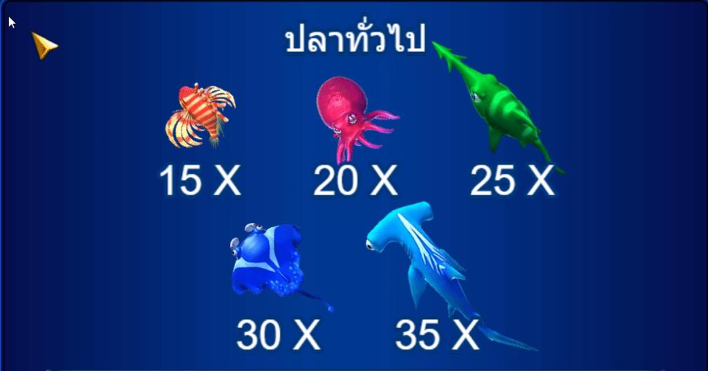 ปลาทั่วไปอัตราการจ่ายจะอยู่ที่ X2 ไปจนถึง X35