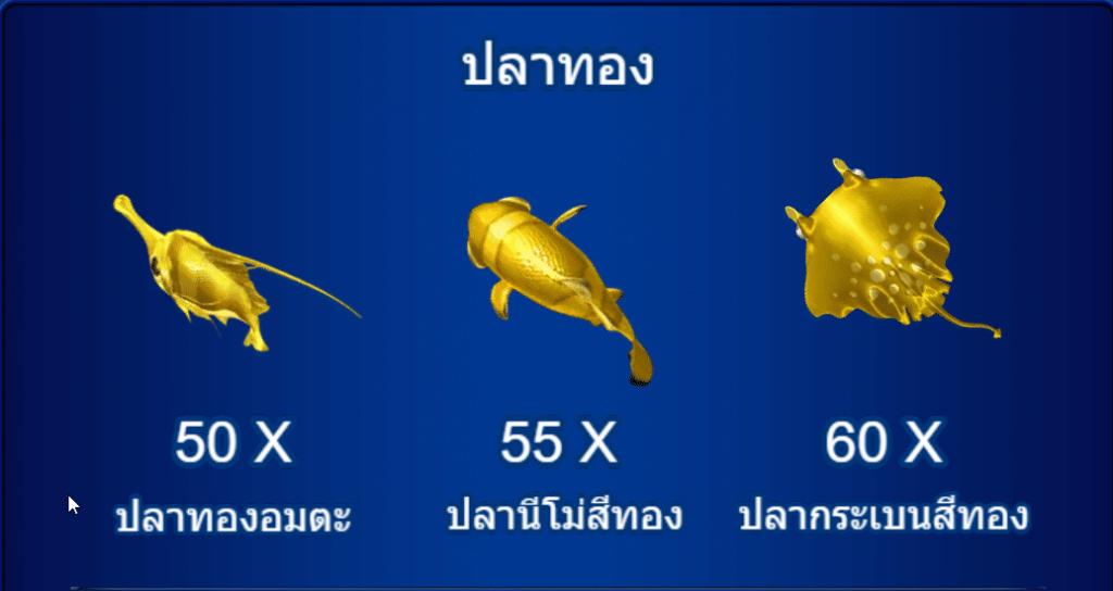 ปลาทองจะมีอัตราการจ่ายอยู่ที่ X50 , X55 , X60