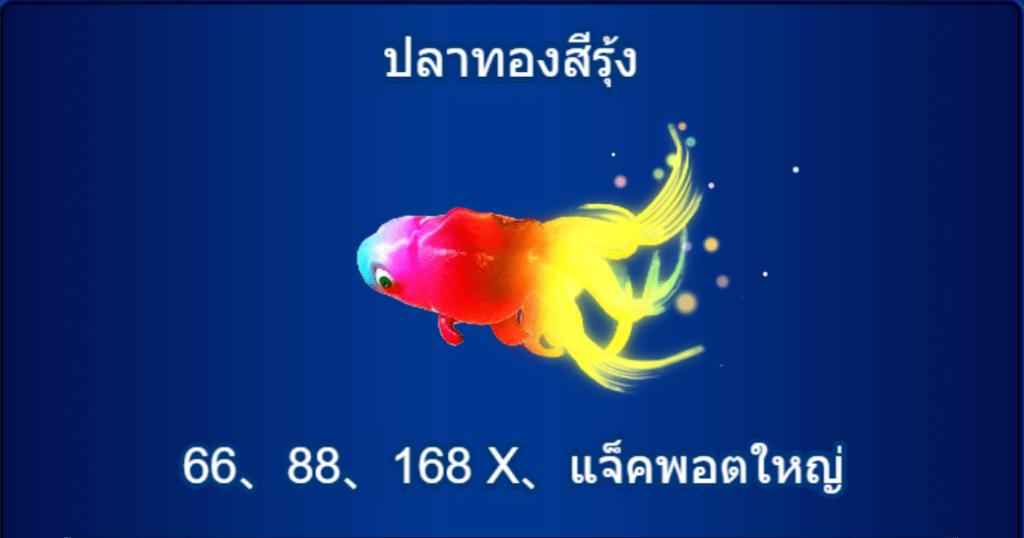 ปลาทองสีรุ้งจะมีอัตราการจ่ายอยู่ที่ 66 ,88 ,168X และยังมีลุ้นแจ็คพอตใหญ่ที่ทางเราไม่ขอเฉลยอยากให้เพื่อนๆไปลองกันเองดีกว่า 555!! แต่รับรองว่าคุ้มค่ากับการเล็งแล้วยิงเจ้าปลาตัวนี้มาก